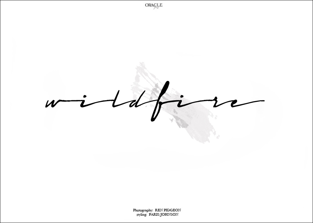 Wildfire-Graphic-Oracle-Fox